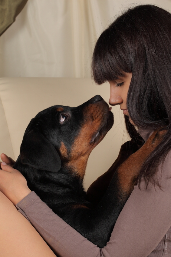 Snuggling up with your dog is a great stress buster. There is no better therapy than 'Pet Therapy'