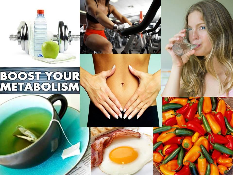 metabolism final