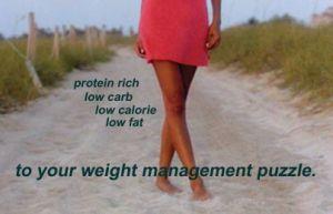 protein-shake-flyer_03