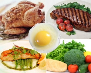 Food-Protein