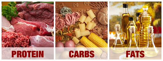 protein-carbs-fats
