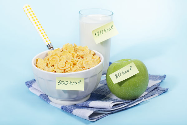 calorie-count-gadget-art
